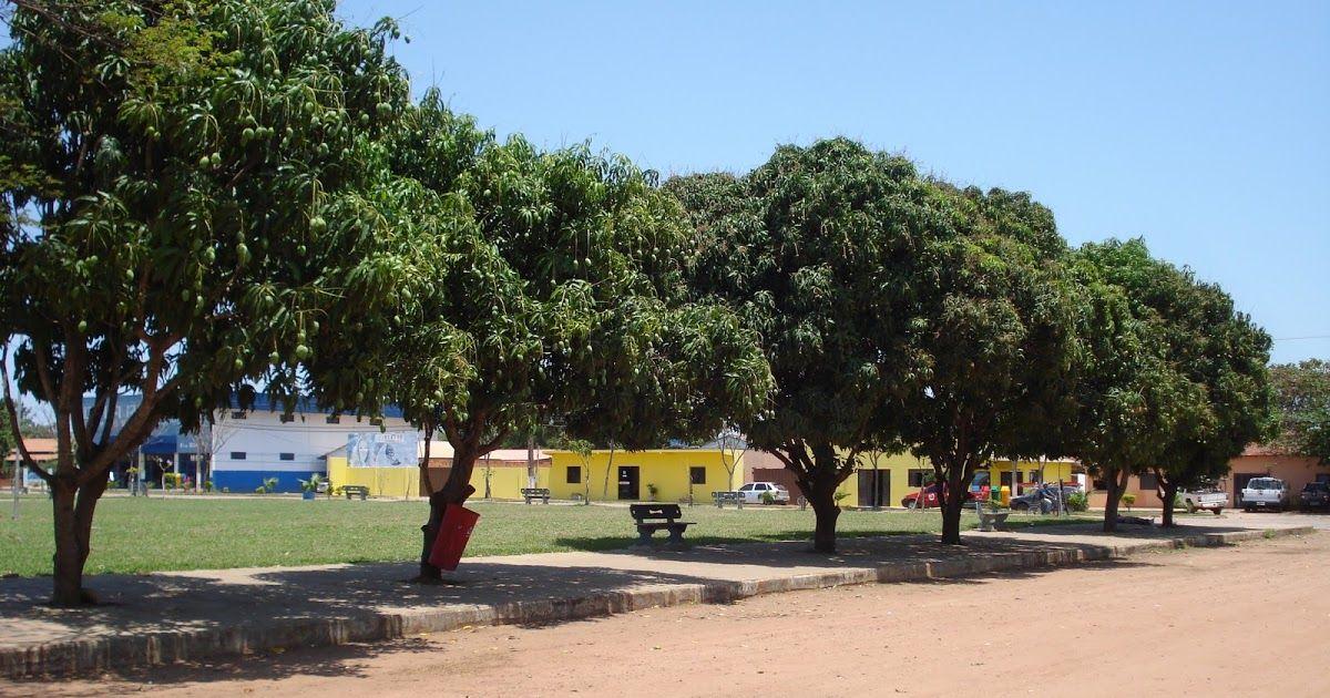 Chapada Gaúcha Minas Gerais fonte: i.pinimg.com