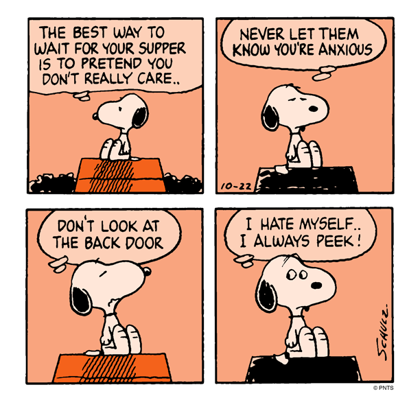 Advice from Snoopy.