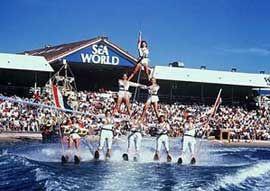 Ski Show At Sea World Australia Travel Sea World Gold Coast Queensland