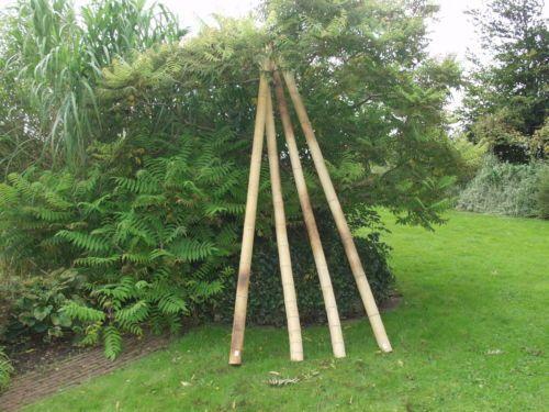 BambusrohrBambuspfostenPfostenfuerBambusSichtschutz