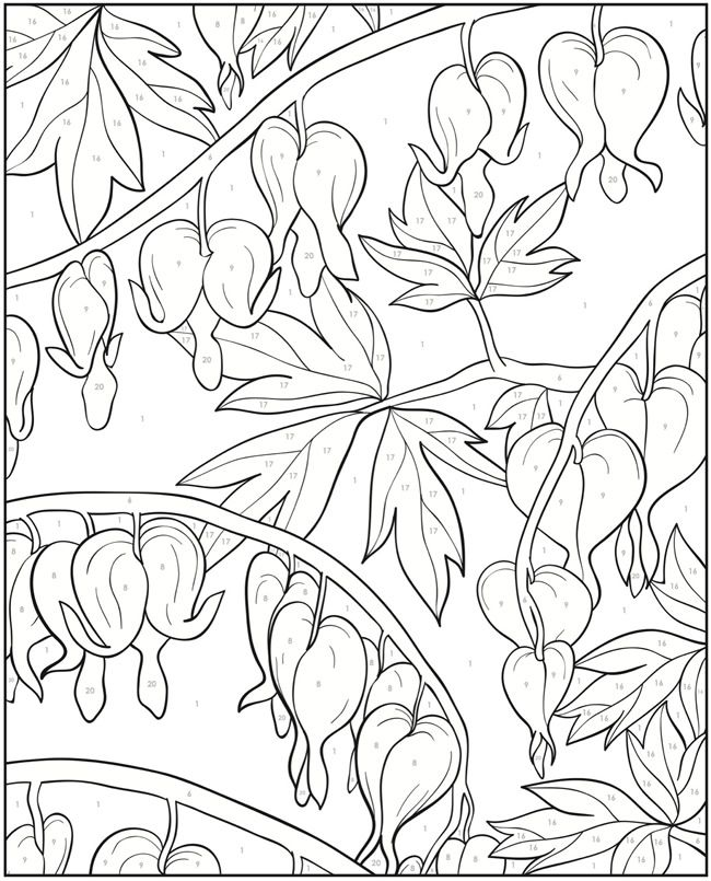 Creative Haven Floral Designs Color By Number Coloring Book Dover Publications Color Chart 1 Light Yel Adult Coloring Pages Coloring Books Coloring Pages