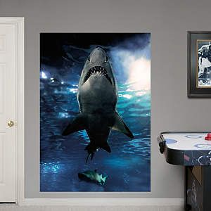 New Fathead Wall Graphics. Shark BathroomAnimal ...