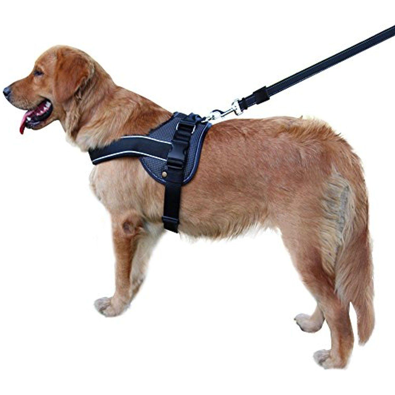 Royalwise Dog Vest Harness Black Soft Padded For Large Dogs
