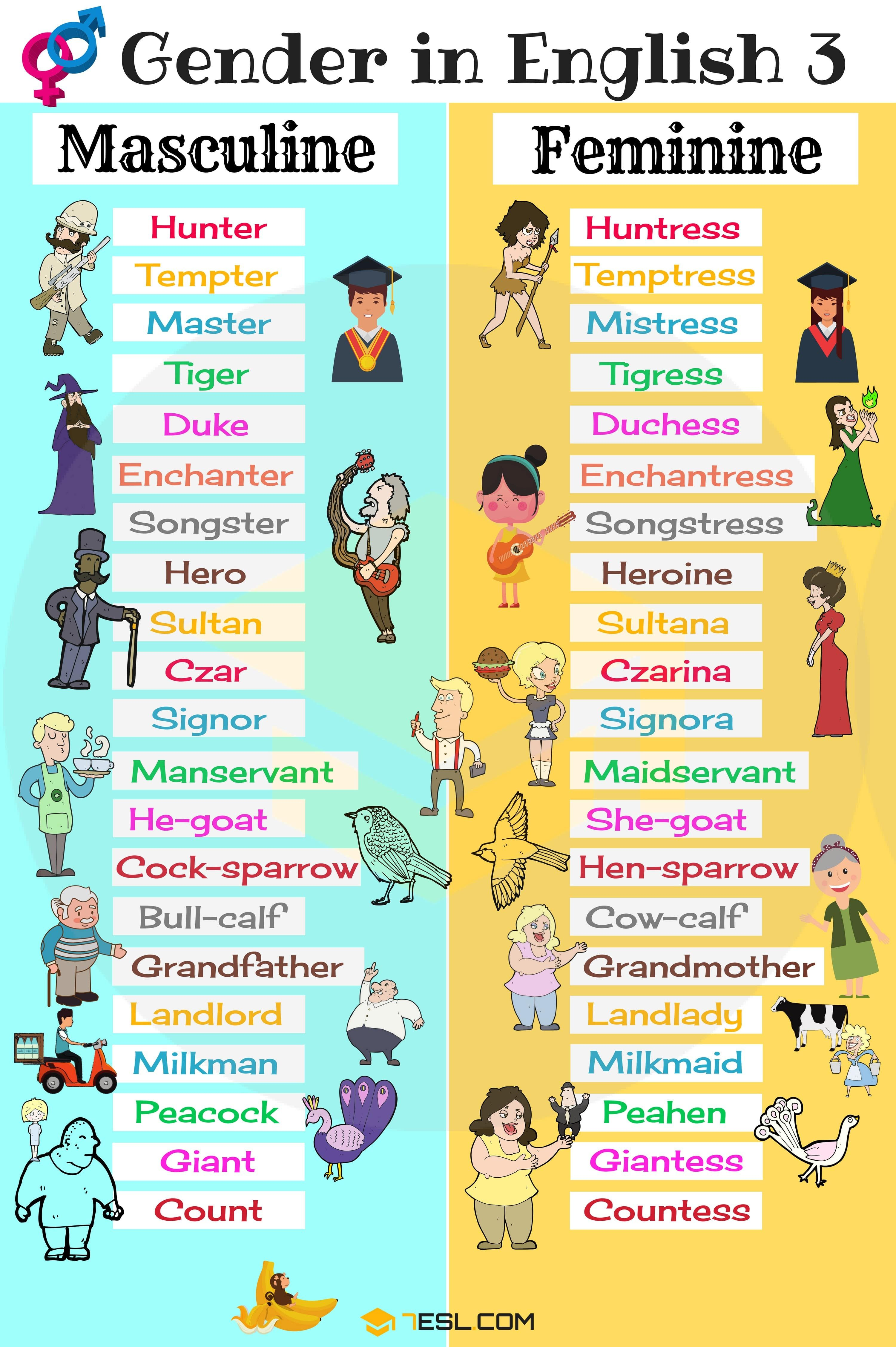 Gender Of Nouns Useful Masculine And Feminine List
