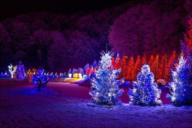 52 Amazing DIY Outdoor Christmas Decorations Diy outdoor christmas