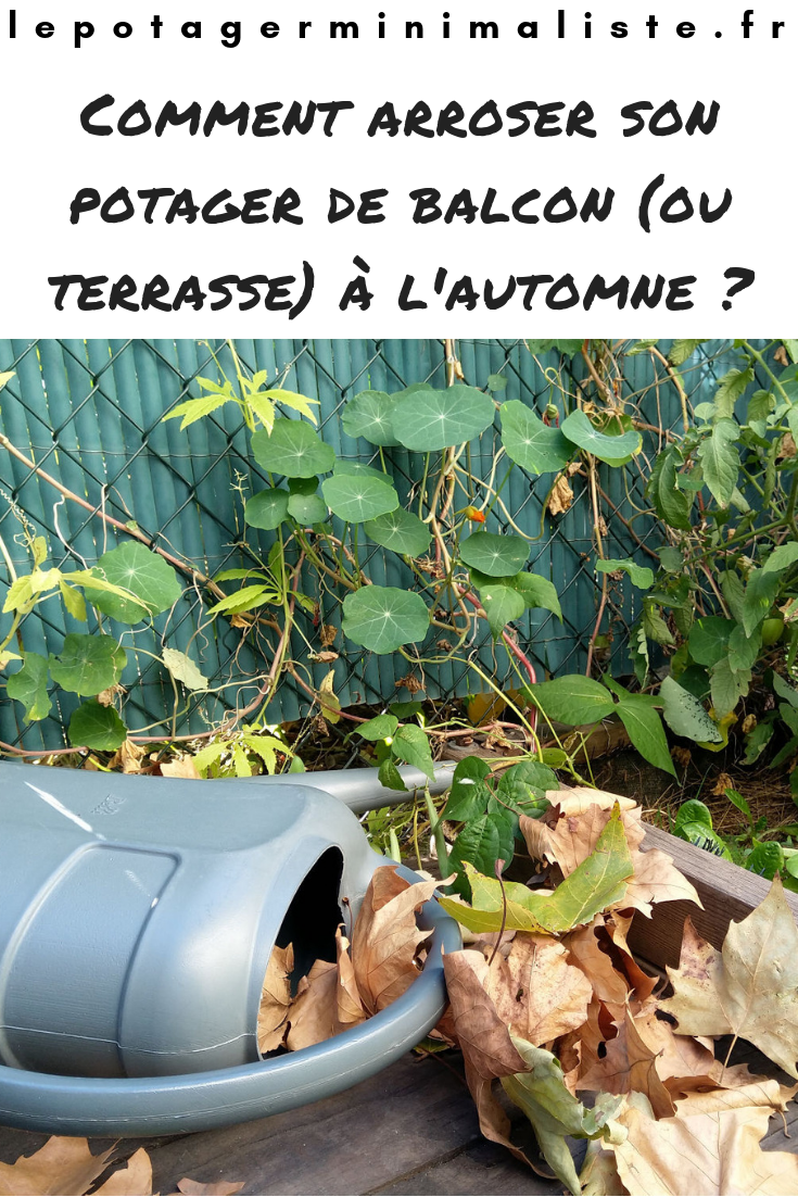 Comment Arroser Son Potager De Balcon Ou Terrasse A L Automne