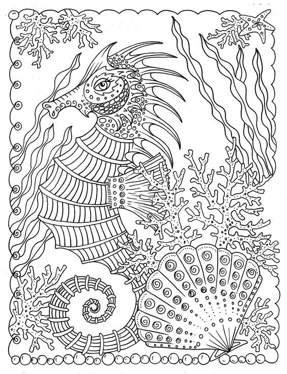 Relaxing Shells To Color Away The Worries Of The Day By Artist Deborah Muller Spiral Bound Single Sided P Animal Coloring Pages Coloring Pages Coloring Books