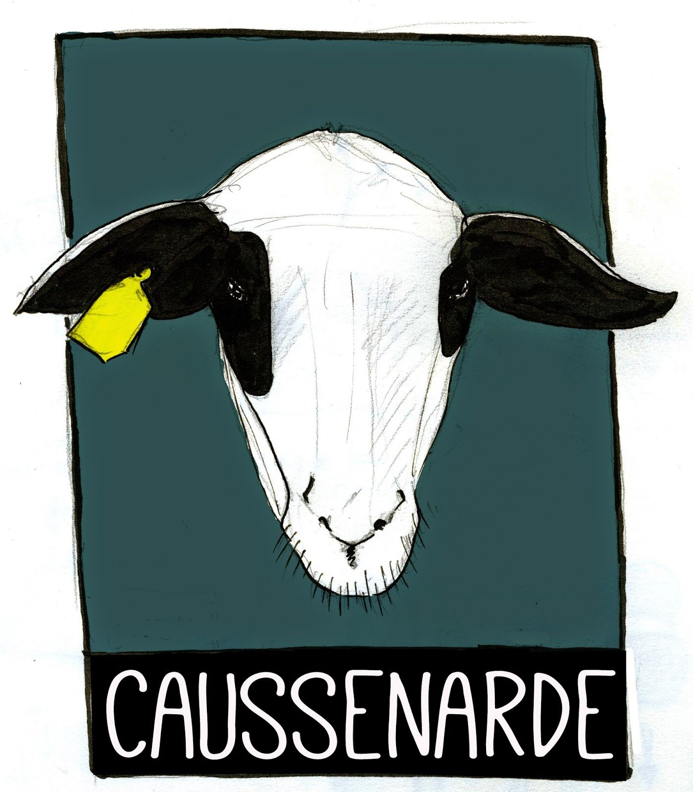 La Caussenarde Races Moutons Laine Mouton