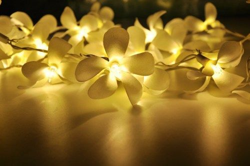 White with light green Frangipani flower string lights for Patio,Wedding,Party and Decoration (20 bulbs) | ginew - Weddi