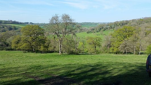 See the rolling acres of organic green pastures of Perridge Farm on a sunny day