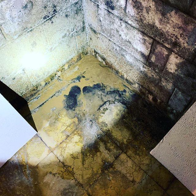 Soil Sediment Coming Up Through Basement Floor syracuseny