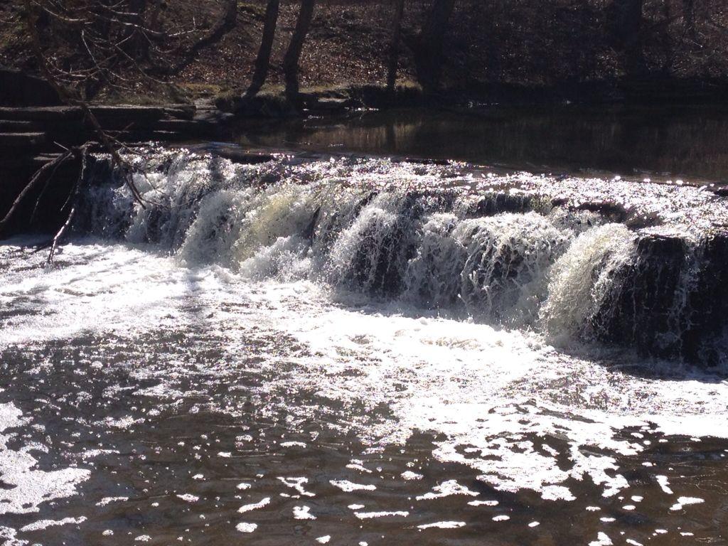 Waterfall Glen 4/2015
