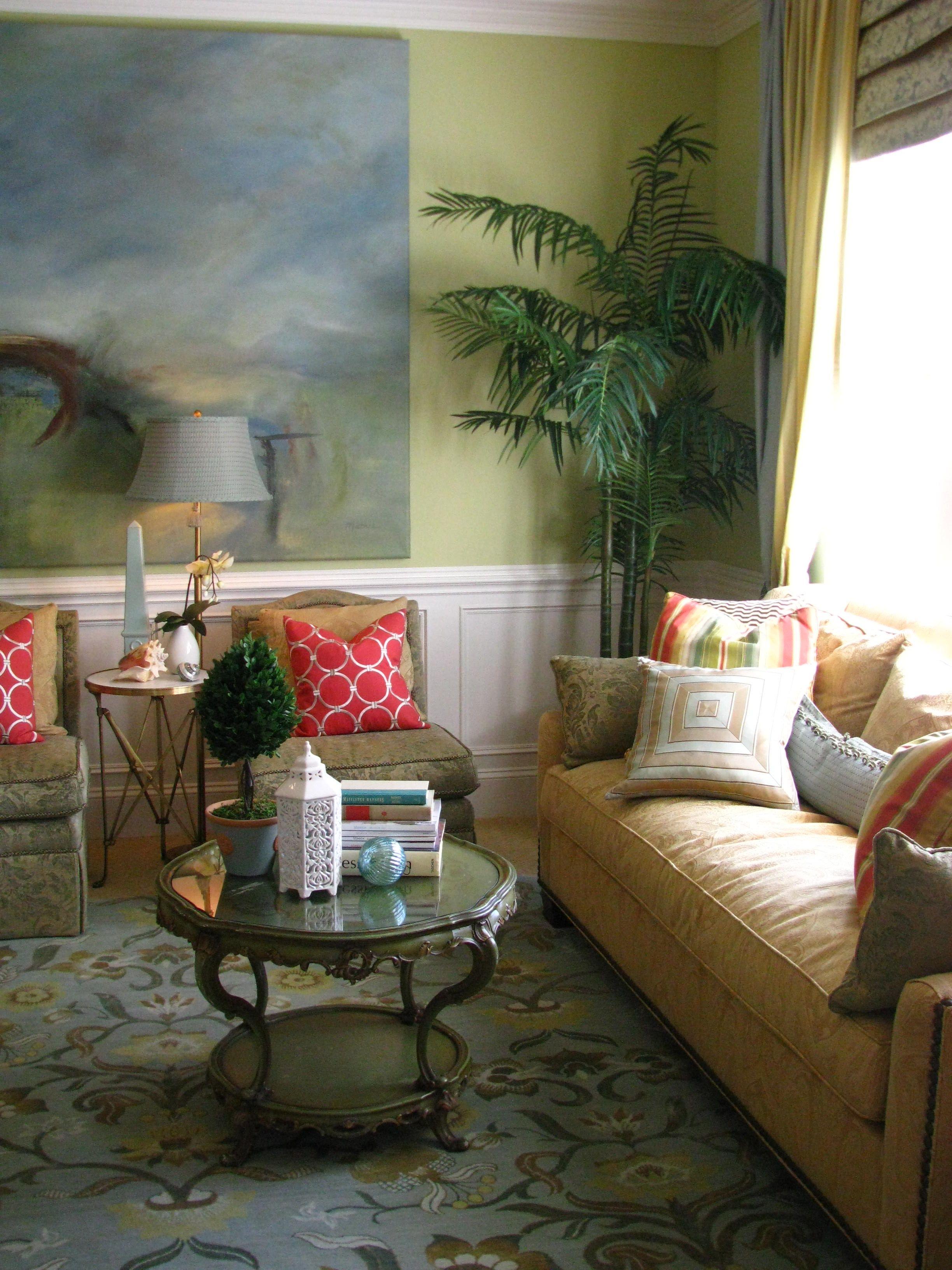 10+ Best Plants For Living Room Corner