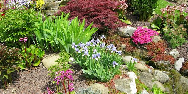 Landscaping Rock Garden Ideas Rock Garden Plants Landscaping With Rocks Rock Garden Design