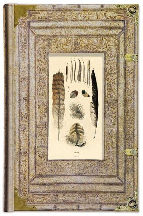 Art Frame Journal, Feathers
