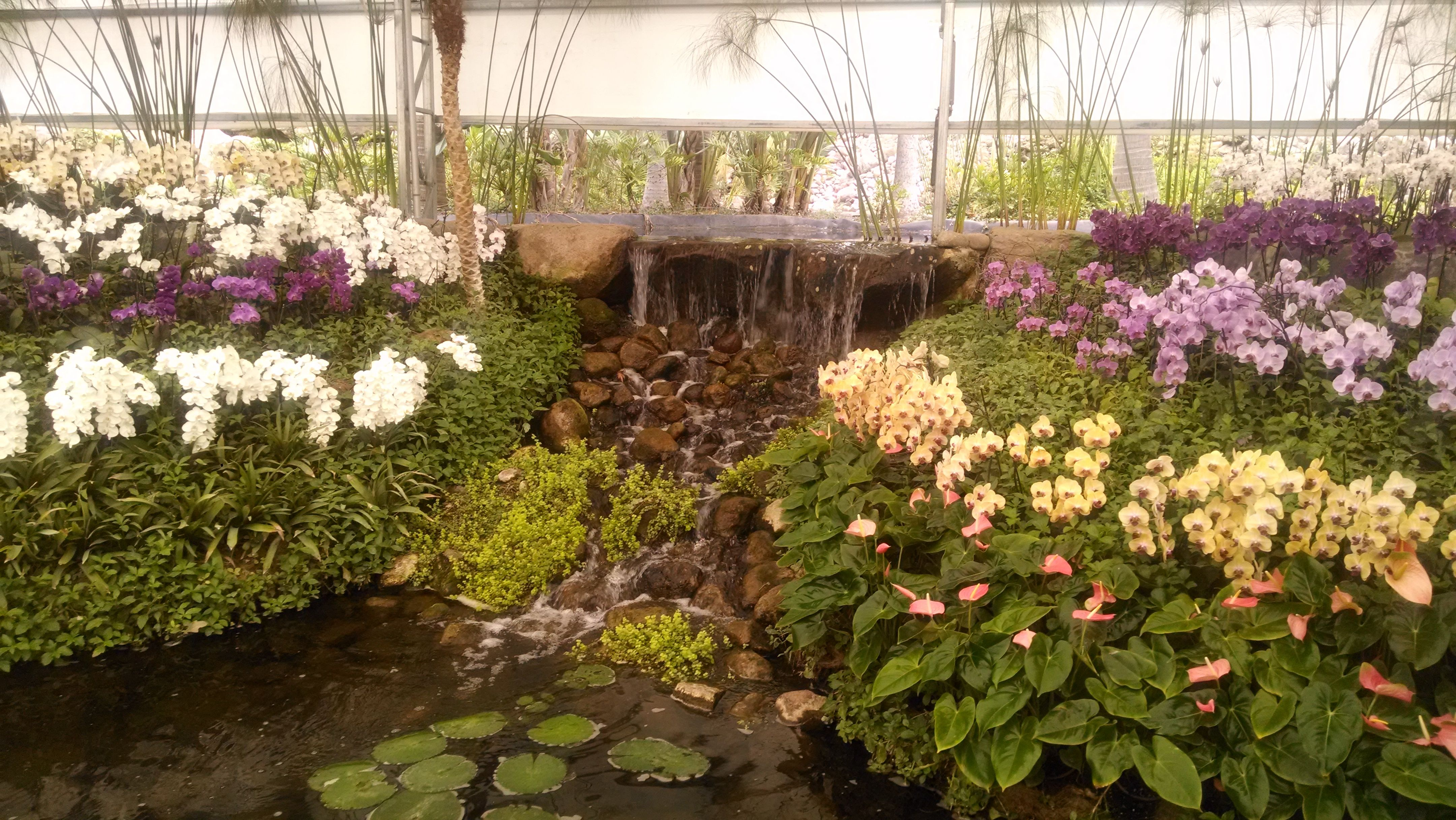 Jardines De M Xico En Jojutla Morelos Lugares Visitados  # Muebles En Jojutla Morelos