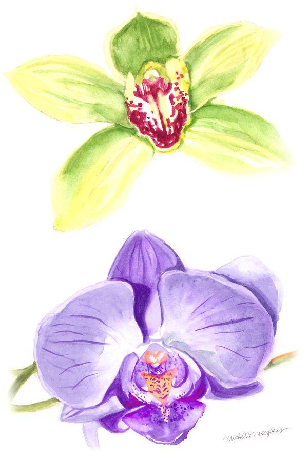 Watercolor orchids by artist Michelle Mospens. - www.michellemospens.com