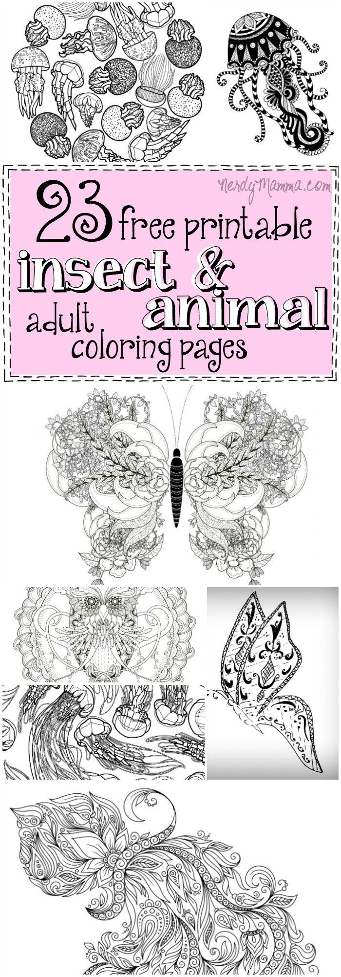 23 Free Printable Insect Animal Adult Coloring Pages Adult