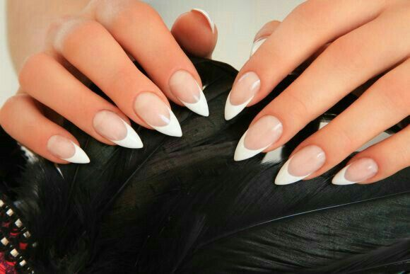 French Stiletto Nails French Acrylic Nails French Stiletto Nails French Tip Nails