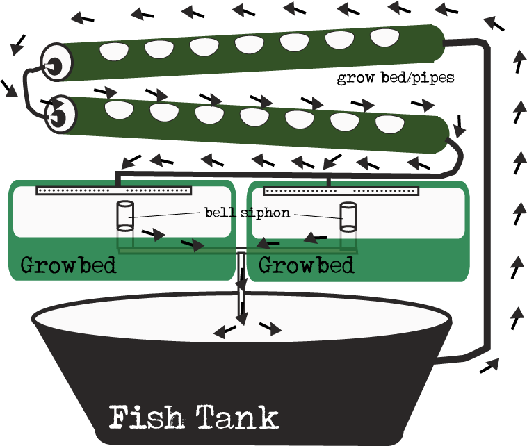 Aquaponic Diagrams Ebb And Flow Gravity Feed Aquaponic