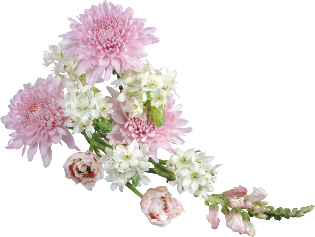 Pink lily flower transparent image the cliparts - Transparent Soft Flower Arrangement Clipart