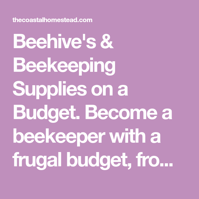 Beehive's & Beekeeping Supplies On A Budget. Become A