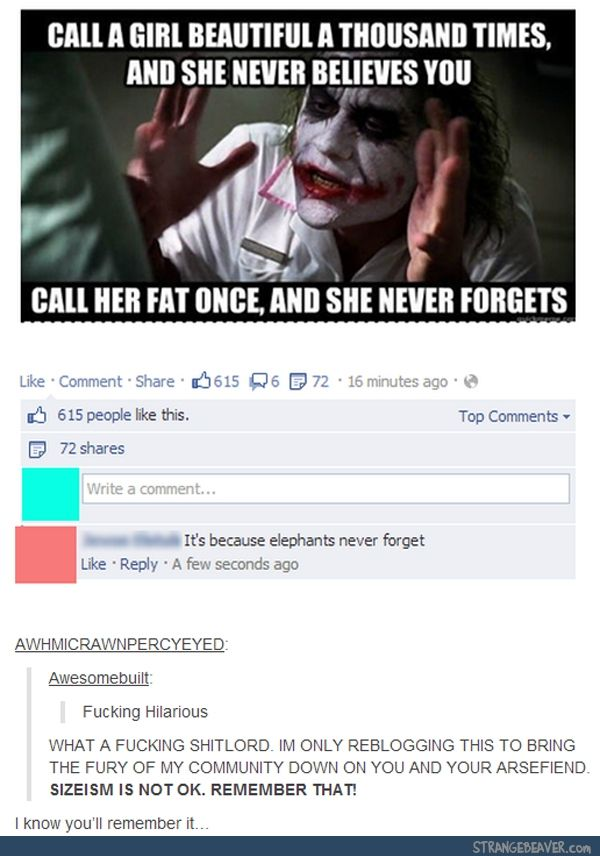 Funny Tumblr Comments Tumblr Funny Offensive Memes Not Funny Funny Cute