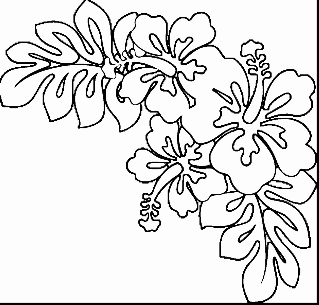 Free Coloring Pages Of Hawaiian Flowers - Coloring Home | 1266x1323