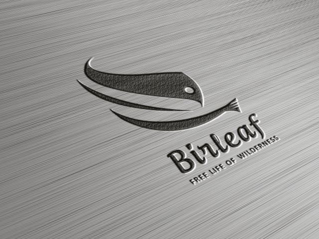 Logo FOR SALE!!!  The logo is a bird in combination with a leaf. The leaf is created by the negative space. The logo could fit in: business related with nature, organic, health/free life, organic/health products.   www.thracianweb.com contact@thracianweb.com
