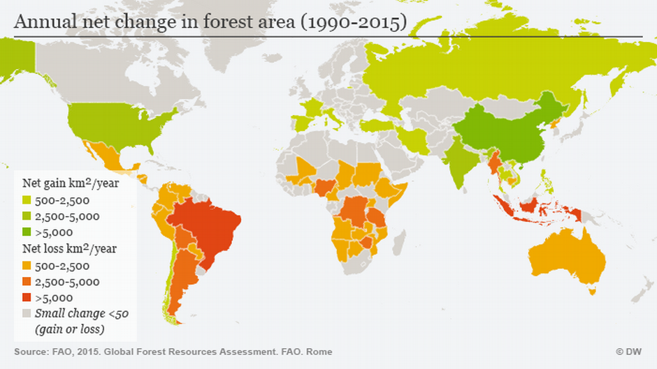 Map Of World Forests.Annual Net Change In Forest Area 1990 2015 Forests Map