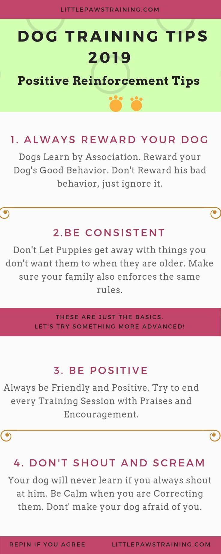 Different Dog Training Tips that you need in 2019 to