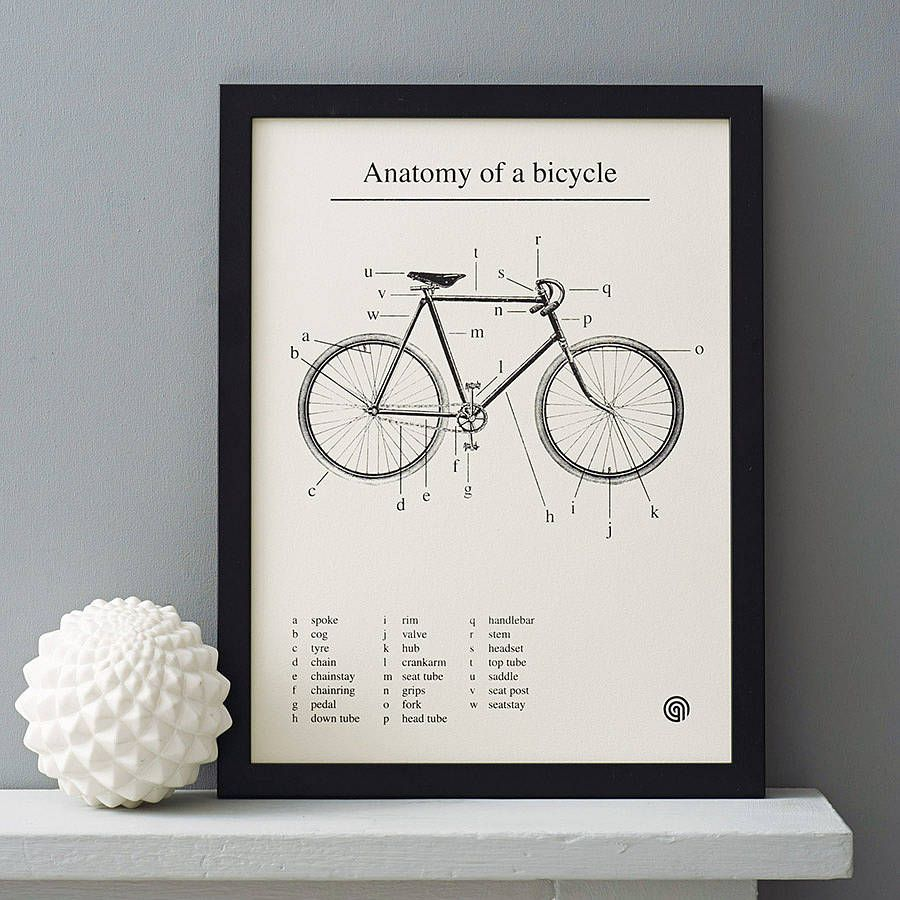 Anatomy Of A Bicycle Screen Print Bicycling Screens And Walls