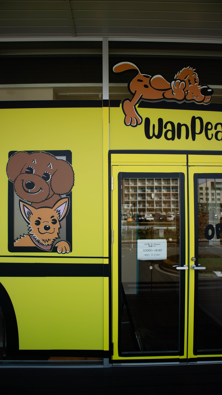 ペットショップ トリミング 犬の幼稚園デザイン ドッグサロン 店舗デザイン 店舗デザイン 幼稚園 デザイン デザイン