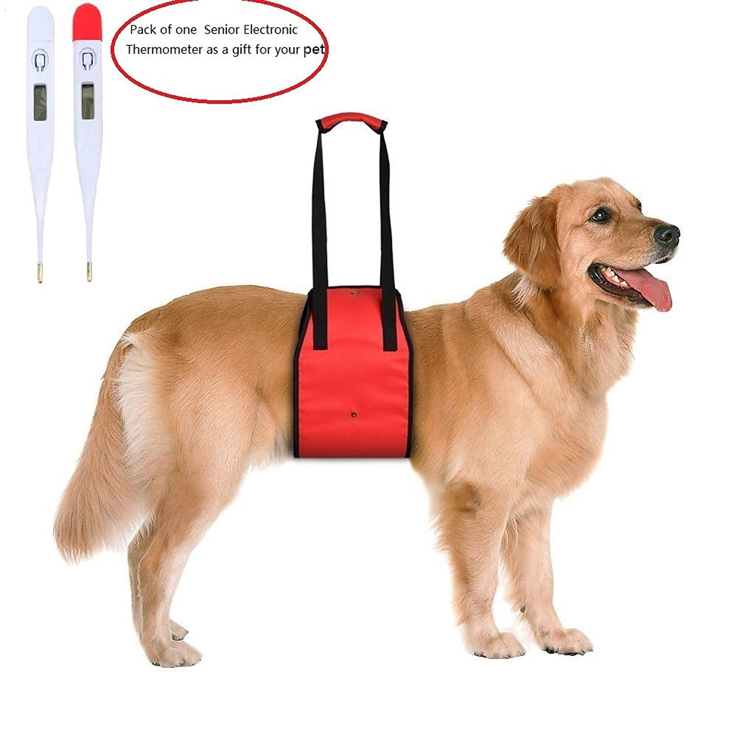 LandLH Dog Lift Support Harness with Handle ist Sling for Pets ...