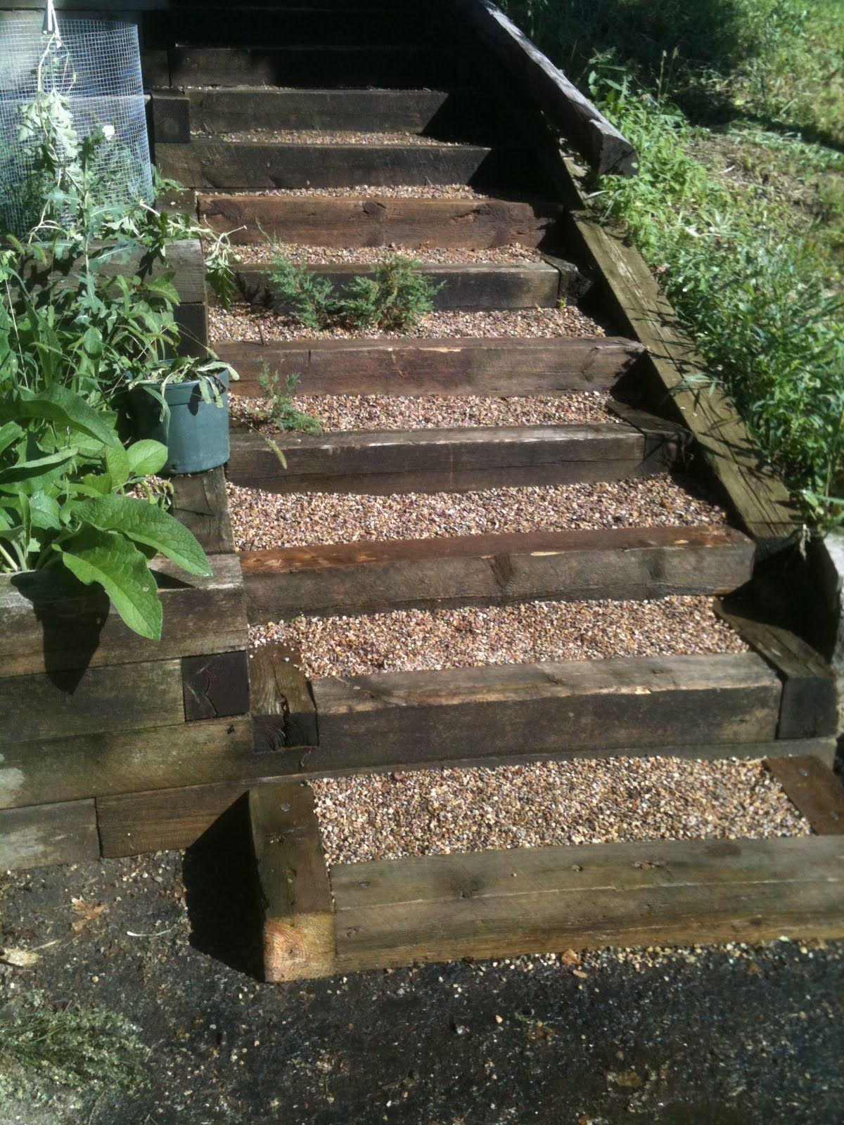 PERMACULTURE AND PERENNIAL FOOD FOREST DESIGN | Garden ...