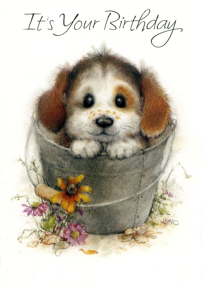 С днем рождения открытка щенок, дню рождения