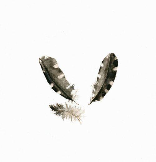 Stuffifoundonetsy: Feather Watercolor Print - Woodpecker...