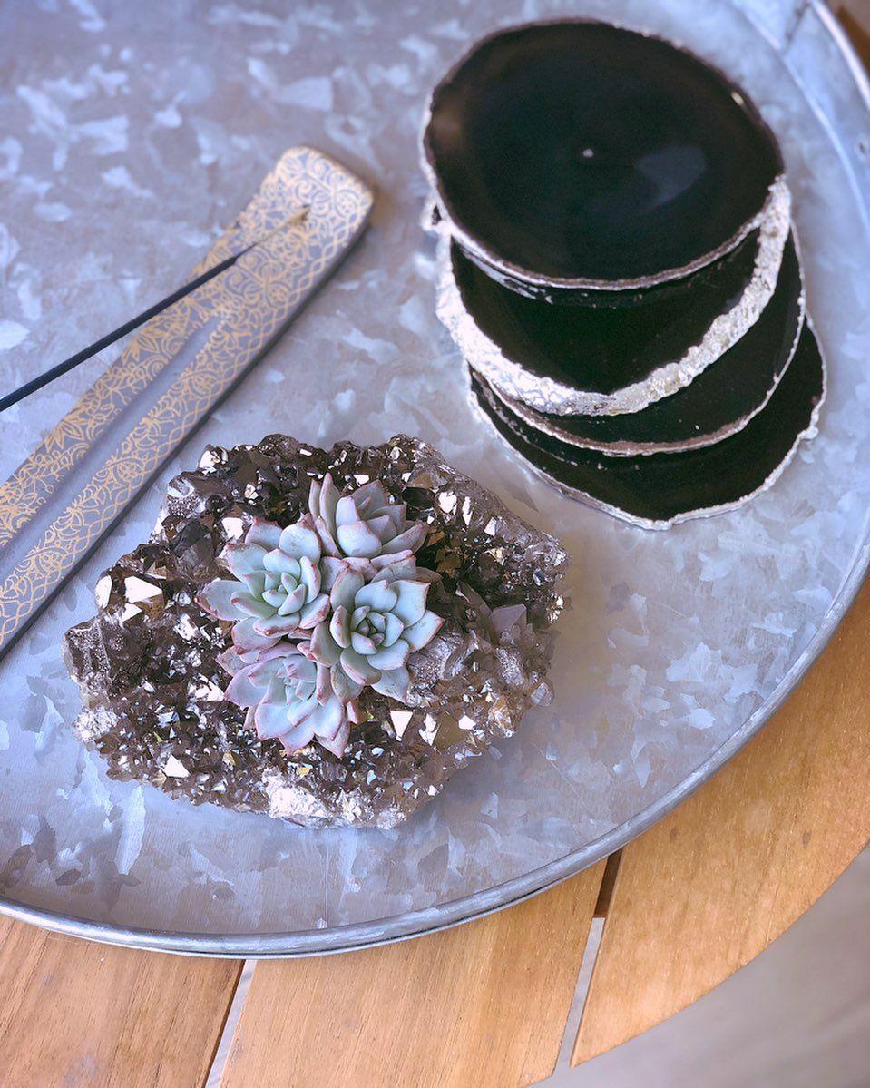 Crystalz cacti on instagram sunday plans charge