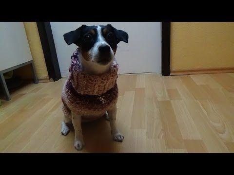 Hundepulli Liebling häkeln - YouTube | Joy | Pinterest | Liebling ...