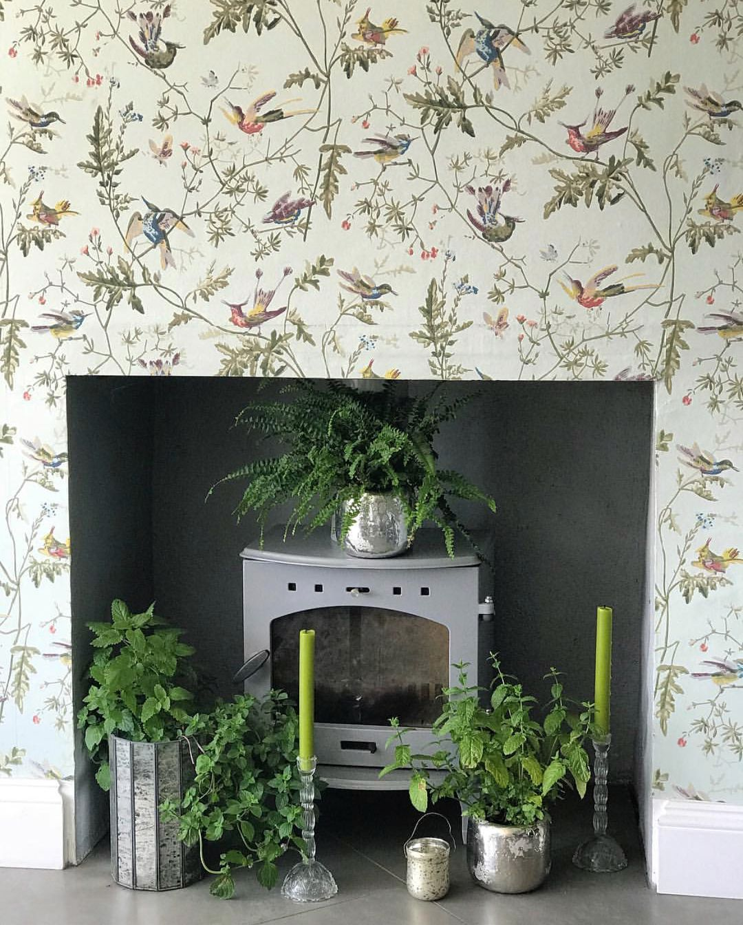 Hummingbirds 112/4014 Cole and son, Green wallpaper