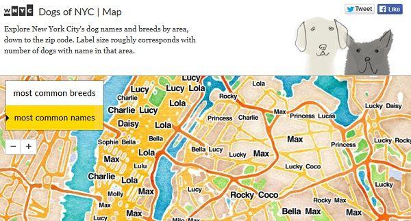 New York S Most Popular Dog Names Dog Names Popular Dog Names City Dog