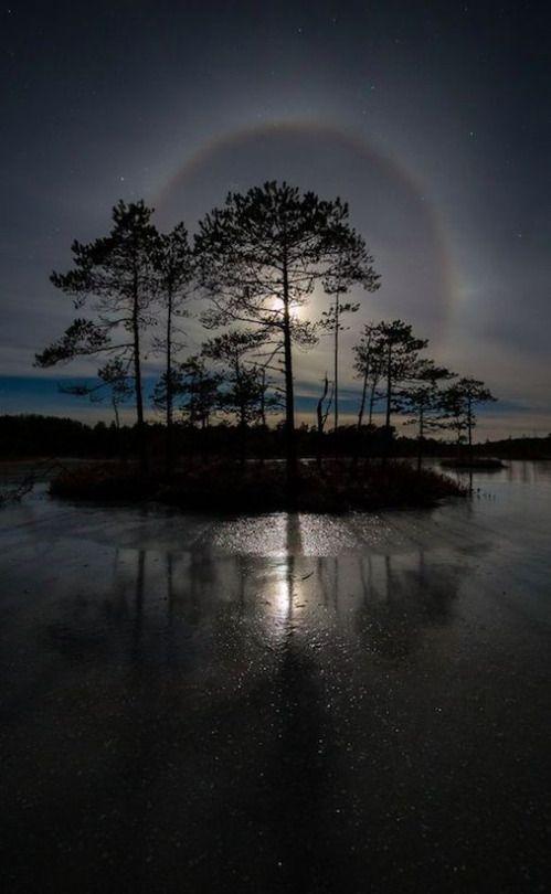 Lunar Glare Paisagem Triste Fotografia Noturna Natureza Incrivel