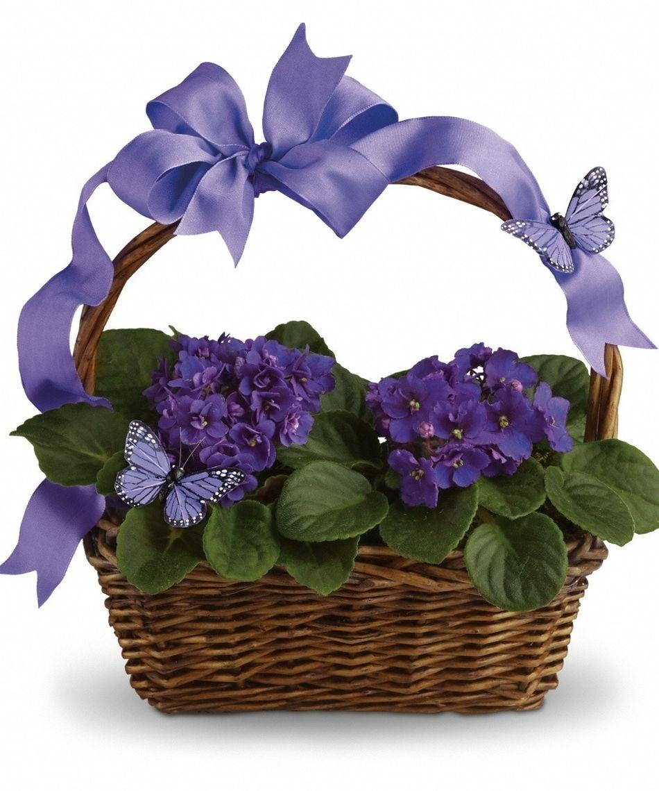 flower delivery layton utah