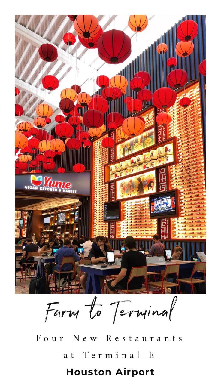 Farm to terminal four new restaurants inside terminal e