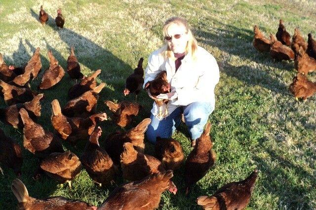 Goodbye Factory Farm Food Inc Chicken Farmer Goes Roguead