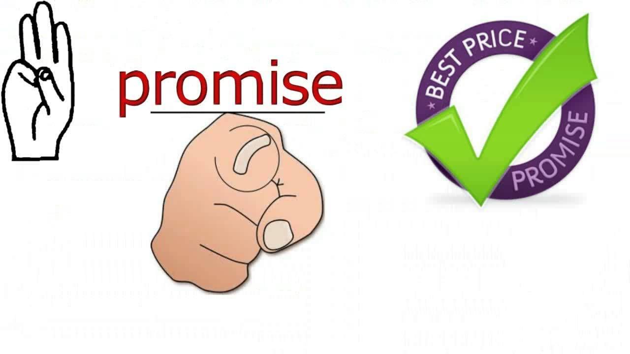 Five Star Insurance Brokers Auto Insurance Quote Brampton
