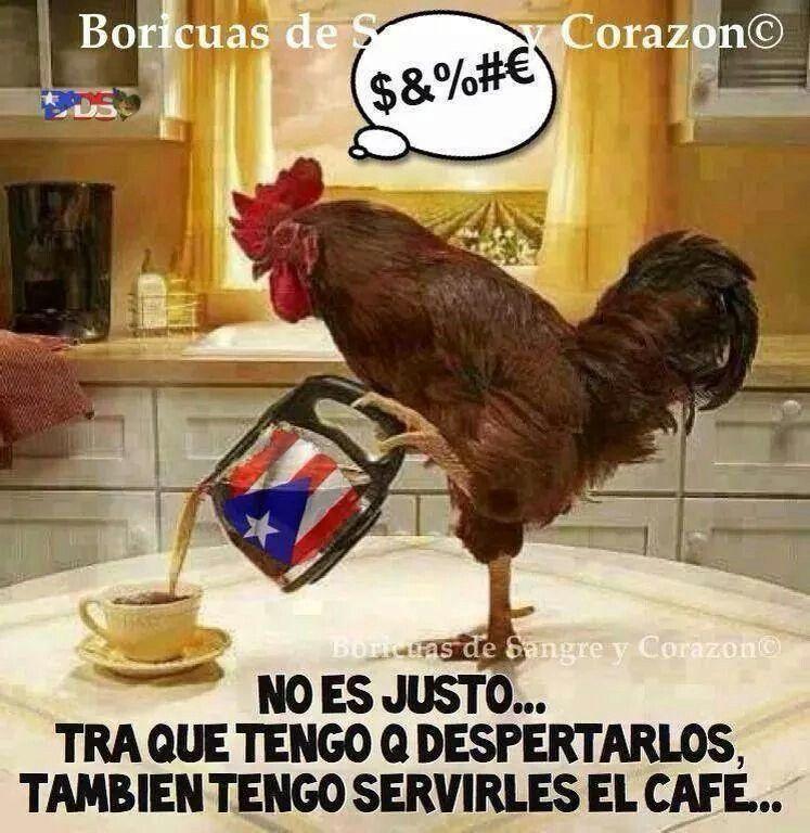 Funny Morning Memes In Spanish