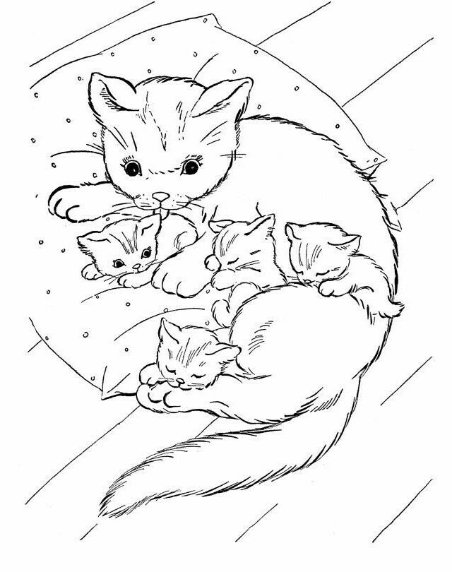 Calico Cat Cat Coloring Page Zentangle Drawings Tangle Art