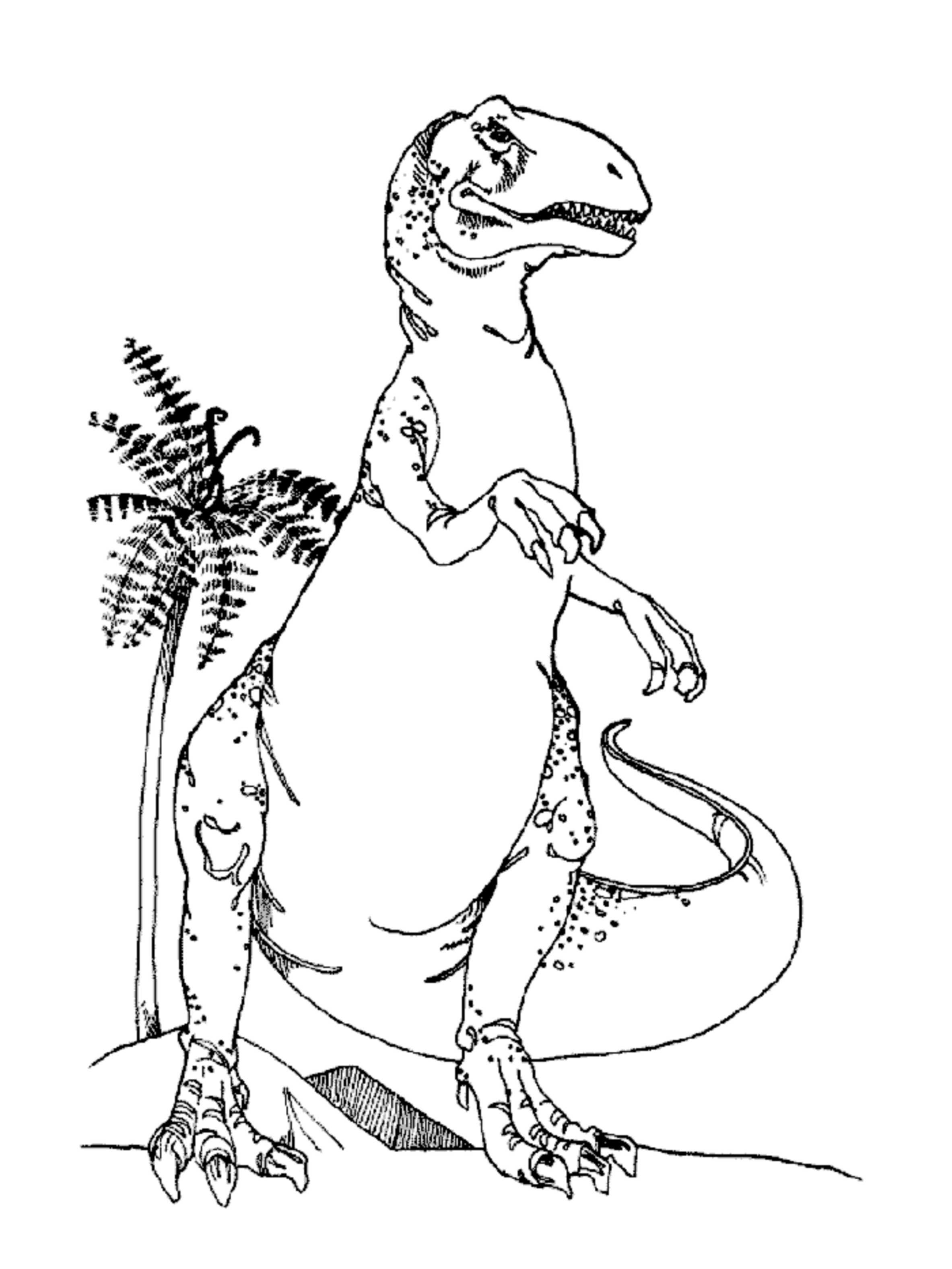 T Rex Color Page Tree Coloring Page Dinosaur Coloring