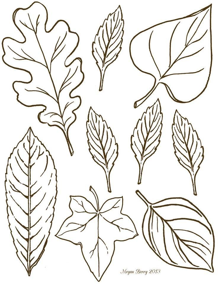 drawn foliage autumn leaf fall crafts 2 clip art art leaf template
